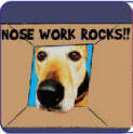 Nose Work Rocks!!